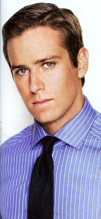 armie hammer perfection