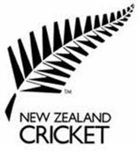 Cricket logo - do you this?
