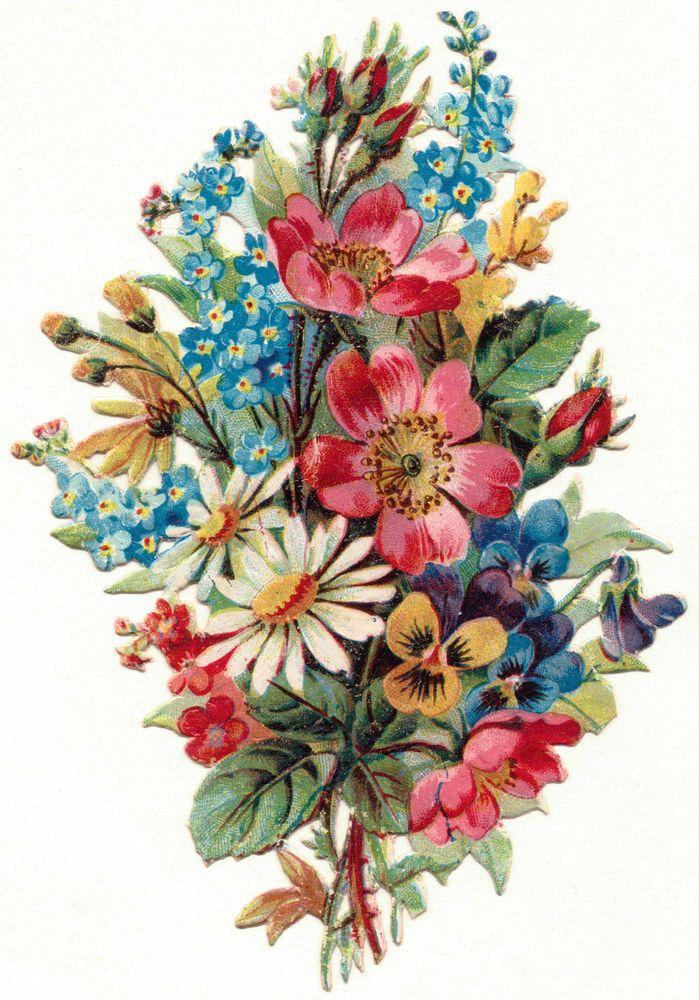 Oblaten-Glanzbilder-scrap-chromo: Wunderschöner Wiesenstrauß -  um 1900