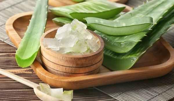 جل الصبار وفوائده العلاجية معلومات قد تذهلك Getting Rid Of Dandruff Aloe Vera Fungal Infection Skin