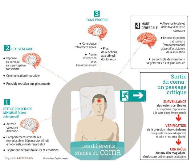La médecine progresse sur «l'après-coma» | Actualité | LeFigaro.fr - Santé
