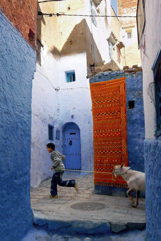 Boy and Goat, Chefchaouen, #Morocco. Photo by Steve Hoge.
