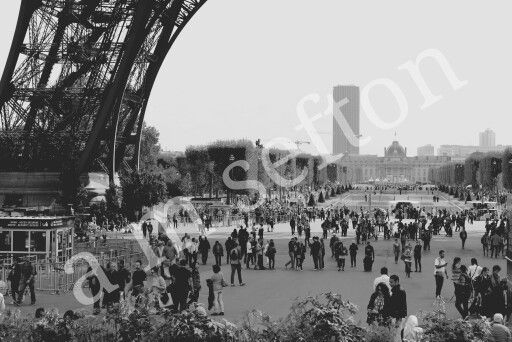 Paris....sight seeing.
