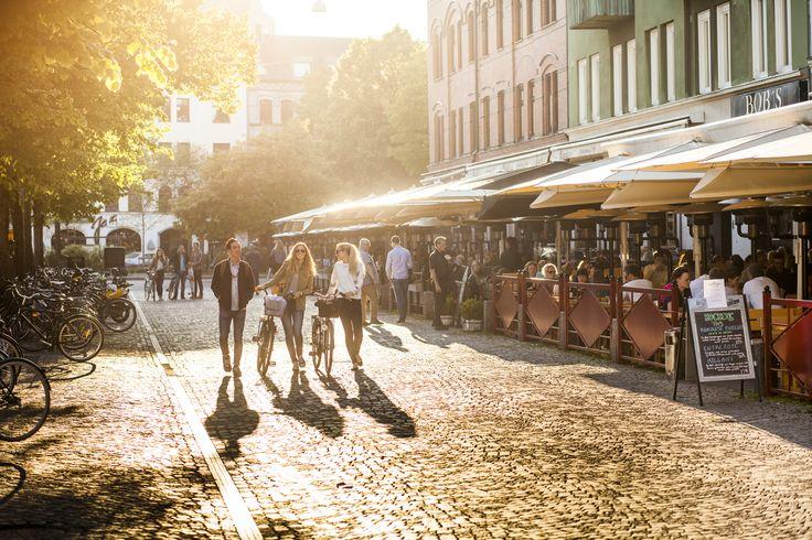 Sind Sie das erste Mal in Malmö zu Gast? Dann finden wird, Sie sollten folgende Sehenswürdigkeiten anpeilen. Es wird ein Spaziergang oder eine Fahrradfahrt, die Altes und Neues bietet. Falls Sie zwischendurch ins Café gehen oder ins Wasser hüpfen wollen, so bietet sich auch dazu Gelegenheit.