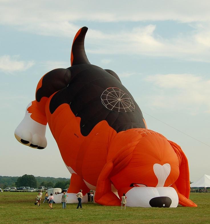 Having a little trouble - NJ Balloon Festival (2006)