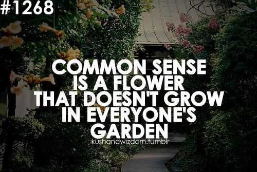 Thoughts, Remember This, Quotes, Gardens, So True, Commons, Flower, True Stories, Common Sense