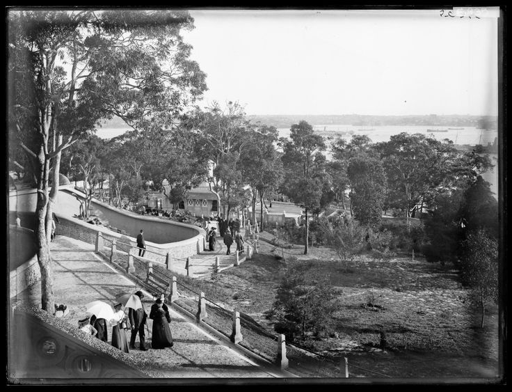 7 October 1916 Taronga Zoo opened on the shores of Sydney Harbour in Mosman, the first public zoo in NSW.
