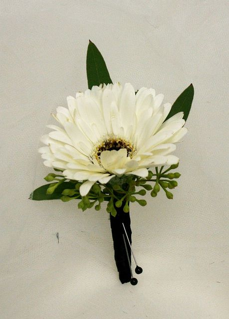 White Gerber Daisy Boutonniere