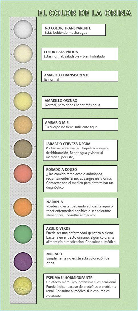 Color de la Orina, significado y prevención