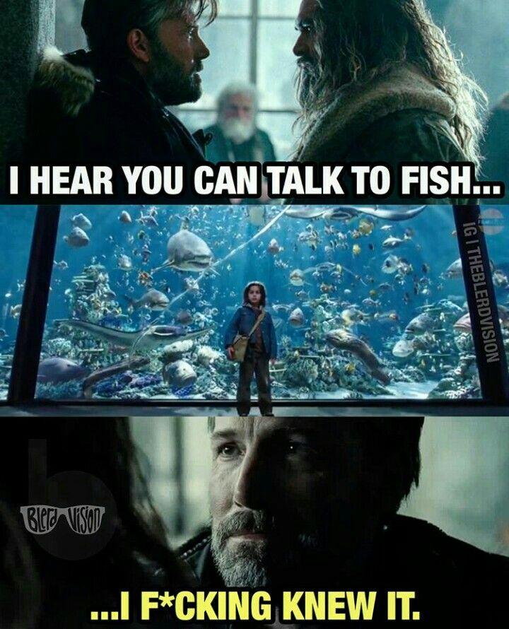 Aquaman memes   DC   Aquaman, DC Comics, Comics