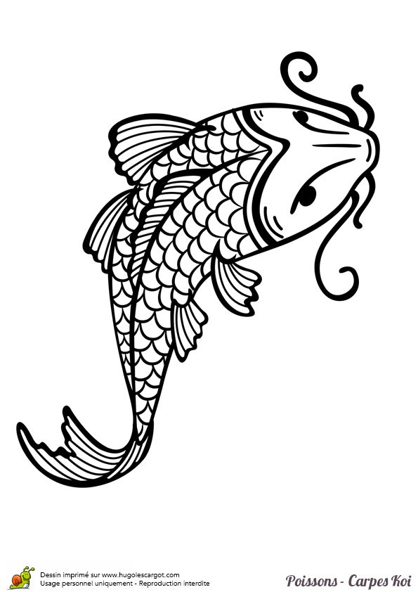 Coloriage poisson carpe koi facile sur texture art - Dessin de poisson facile ...