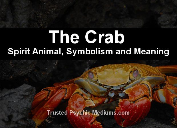 The Crab Spirit Animal | Spirit Animals and Totems | Spirit