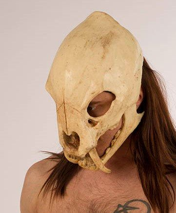 Saber Tooth Tiger Skull Mask With Movable Jaw The Mask