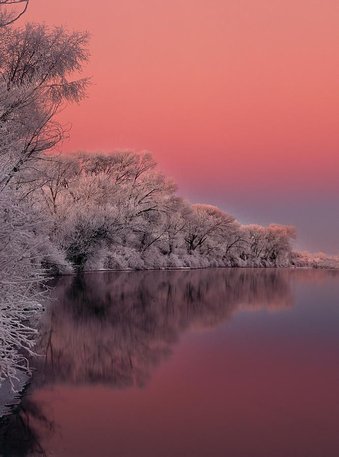 ✮ Colors of Winter: The South, Photos Galleries, Winter Sunrises, Winter Colors, Rivers T-Shirt, Pictures, Snakes Rivers, South Forks, Memorial Mornings