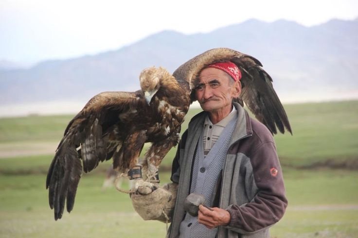 A Kazakh eagle hunter and his eagle