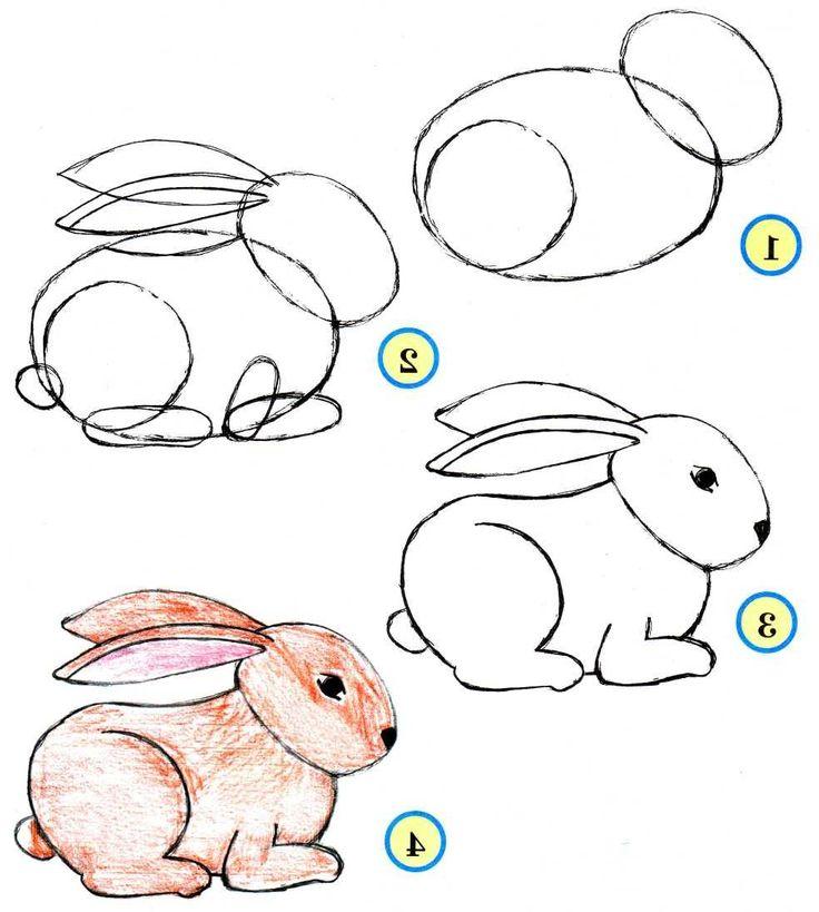порезать картинки как рисовать животных модель еще интернету