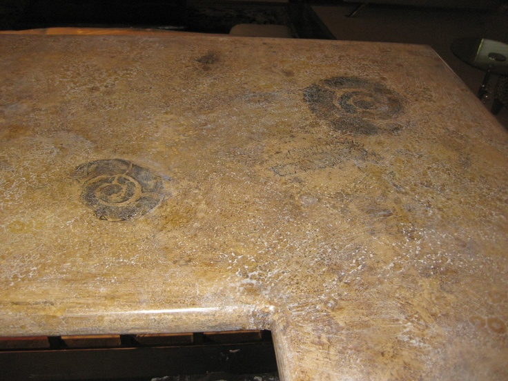 Fossil Countertops Decorating With Nature Pinterest Fossil Search And Image Search