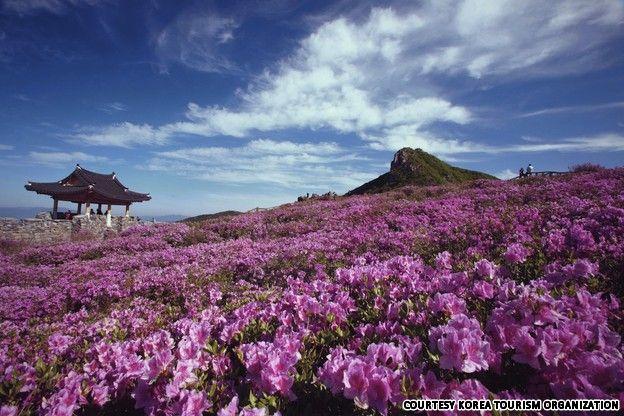 Sancheong-gun South Korea  City new picture : ... about Korea Places to Go on Pinterest | Korea, South Korea and Seoul