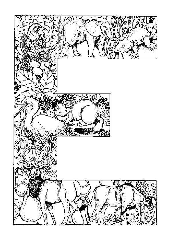 Coloriage alphabet animal e sur Hugolescargot.com - Hugolescargot.com