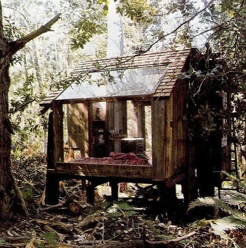Handmade room in the woods