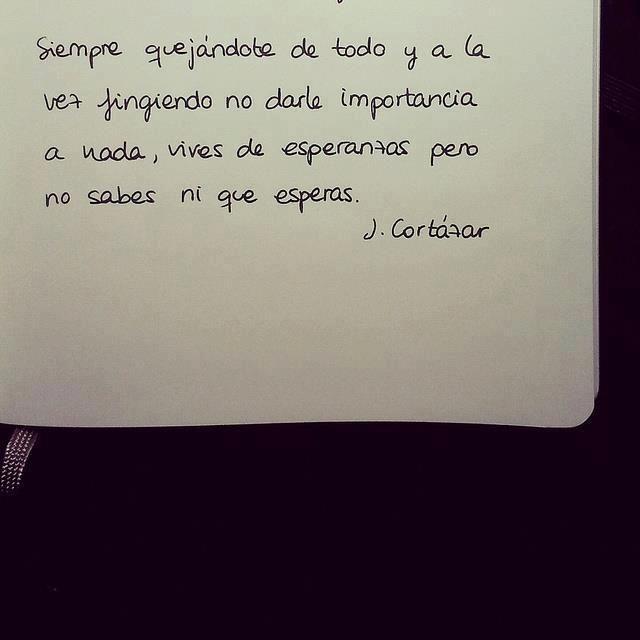 Frases de Julio Cortazar
