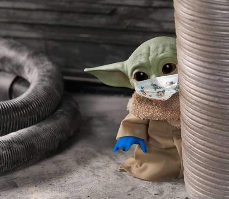 Pin by Crawford on Baby Yoda in 2020 Yoda