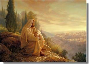Quot Oh Jerusalem Jerusalem How Often Would I Have