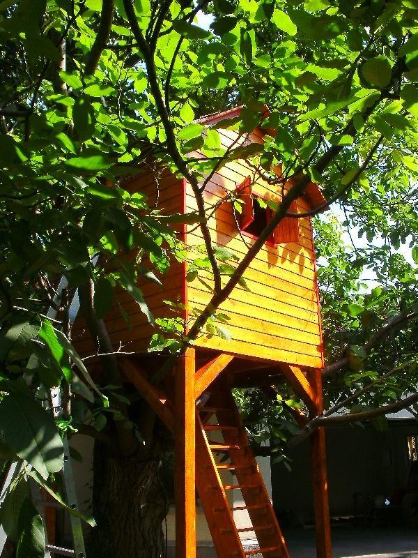 Rhea - the treehouse
