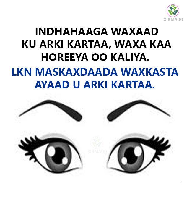 Indhahaaga Waxaad Ku Arki Kartaa...