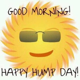 good morning hump day picture