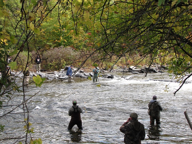 1000 images about salmon fishing pulaski ny on pinterest for Salmon fishing pulaski ny