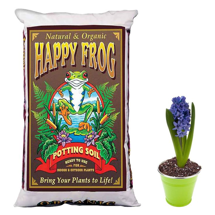 Foxfarm Ocean Forest 6 36 8 Ph Potting Soil Mix And Happy Frog Potting Soil Mix Check This Awesome Product By Going To The Lin Potting Soil Soil Garden Soil