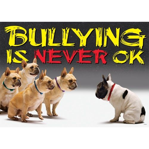 how to stop one dog bullying the other