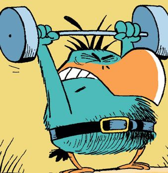 The Bludgerigar is one mean bird. Take a look at him weightlifting! Don't mess with him. #SwampCartoons http://www.swamp.com.au/subscribe.php