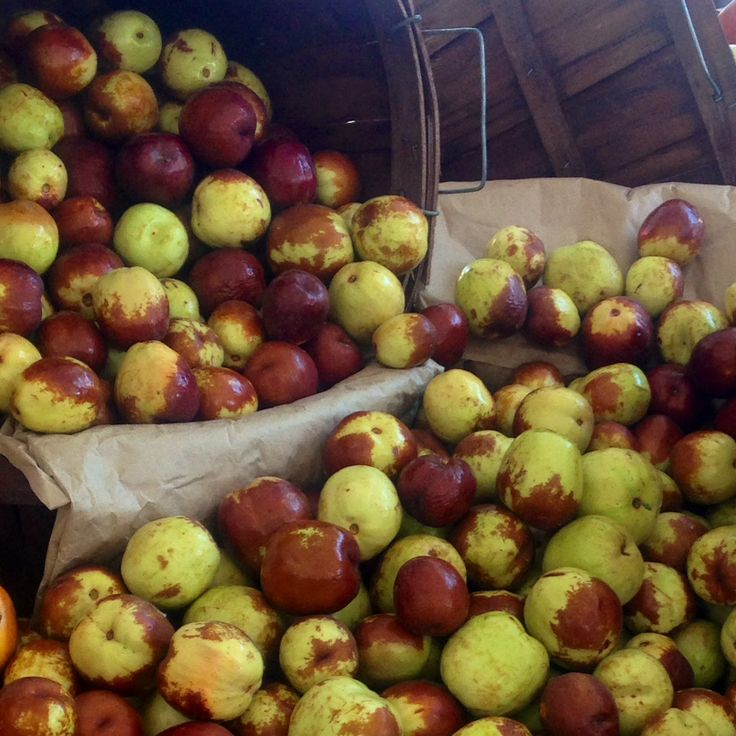 Benefits of Jujube fruit #plantbased #organic