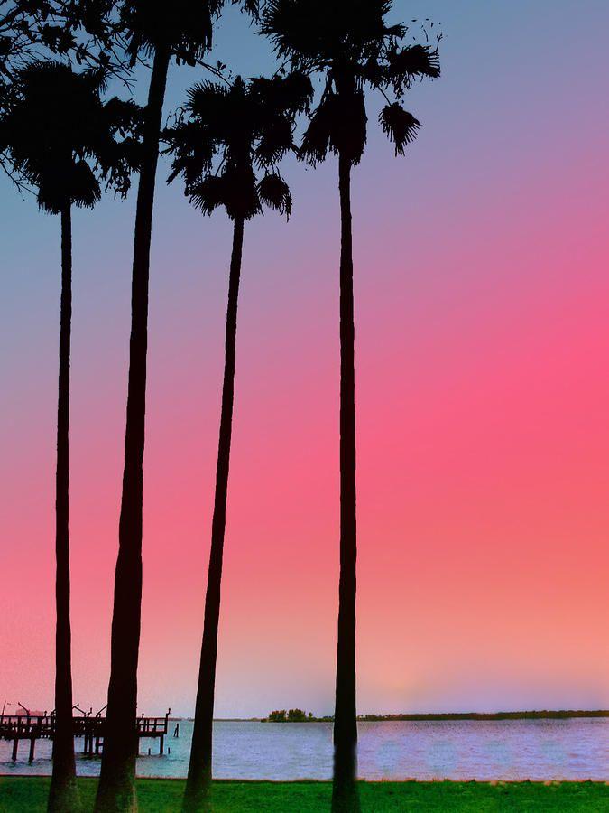 Sunset - Dunedin, Florida. ♥ ♥ www.paintingyouwithwords.com