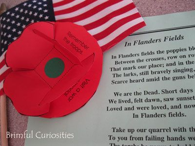 Memorial Day Poppy Craft...
