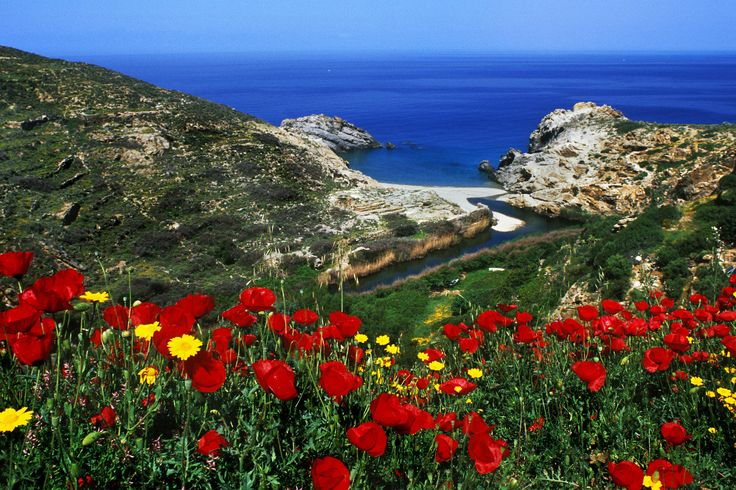 Ikaria, Greece. The land of my family