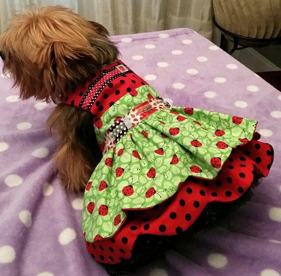 Ocasión especial perro vestido de tamaño por OsuzyQsLapdogDesigns