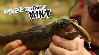 Przynęty Corona Fishing - wobler na pstrąga Mint. #wędkarstwo #przynęty #filmywędkarskie https://www.youtube.com/user/CoronaFishing/videos