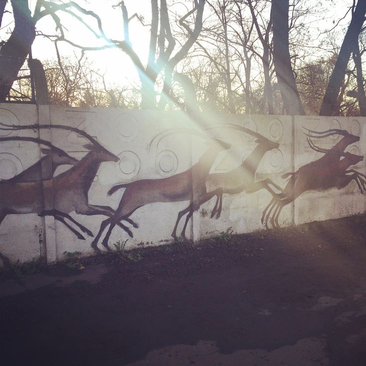 Wroclaw zoo // wall painting