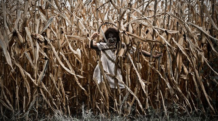 13 Creepy Corn Mazes and Haunted Hayrides - http://modernfarmer.com/2015/10/haunted-corn-mazes-hayrides/?utm_source=PN&utm_medium=Pinterest&utm_campaign=SNAP%2Bfrom%2BModern+Farmer