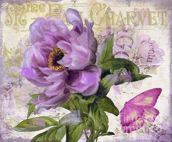 Purple Peony by Mindy Sommers