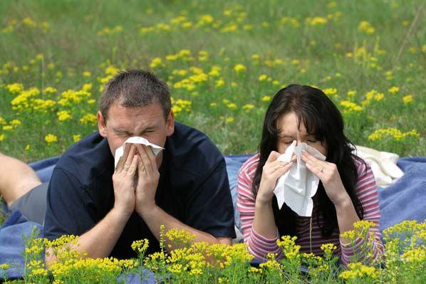 Las 9 alergias más comunes - 1. Rinitis alérgica