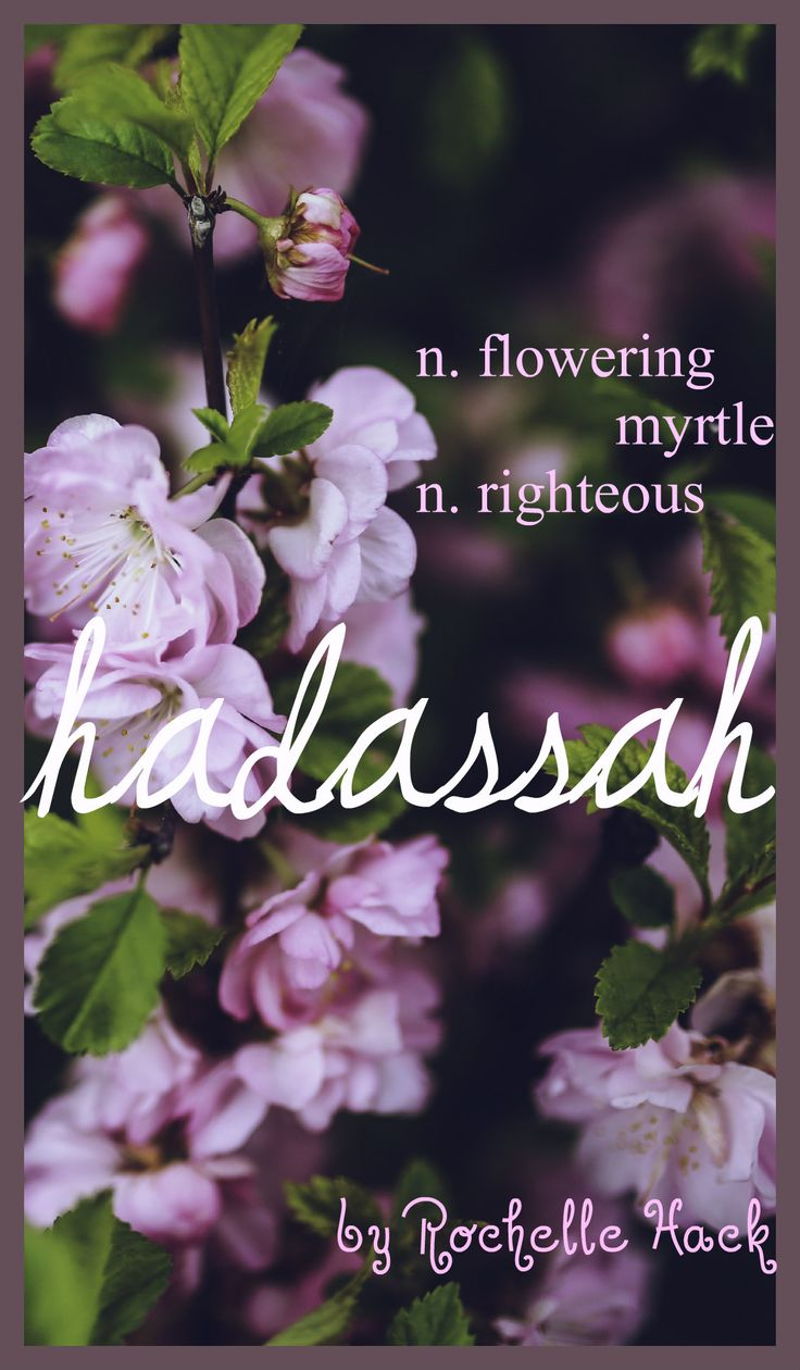 Baby Girl Name: Hadassah (huh-DAH-suh). Queen Esther's Hebrew Name. Meaning: Flowering Myrtle; Righteous. https://www.pinterest.com/vintagedaydream/baby-names/