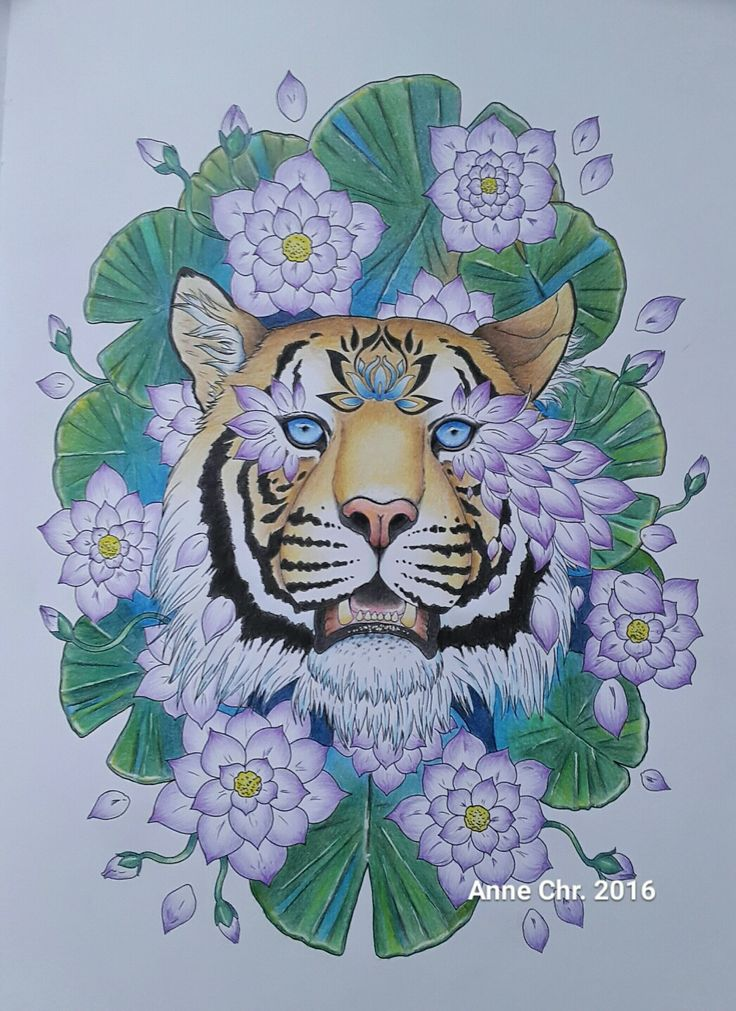 Jojoesart, Crazyanimal colouringbook. My choice of colours.