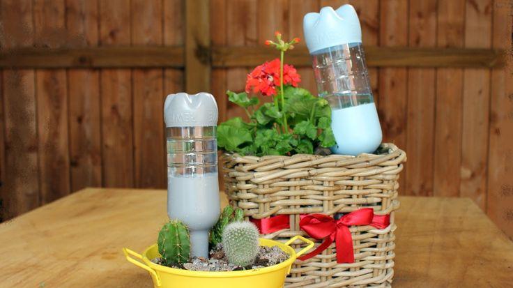 Sommerurlaub und niemand ist da zum Gießen? Aus PET-Flaschen lassen sich ganz einfach, günstig und schnell Wasserspender bauen. So überstehen Pflanzen trockene und heiße Tage.