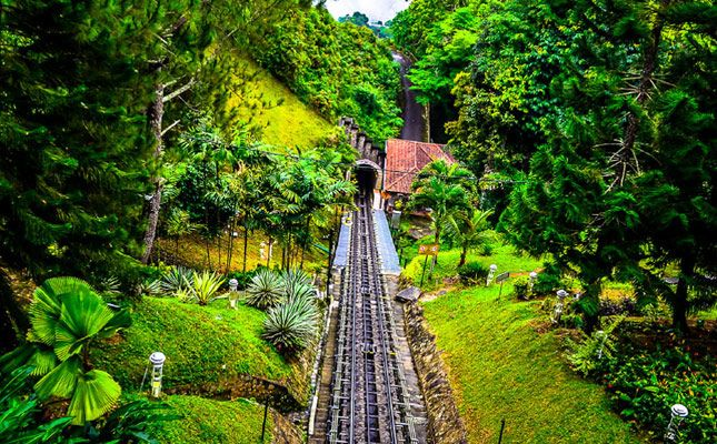 The train line to Penang Hill passes through lush and dense forest