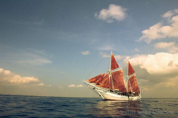 Galleries | SeaTrek Sailing Adventures - seatrek-katharina-phinisi-12