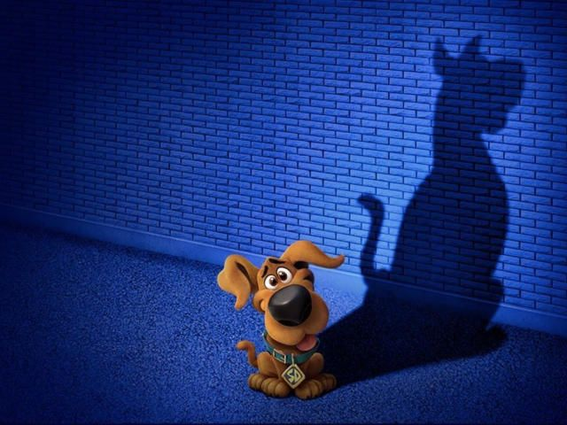 Collection Of Scoob Hd 4k Wallpapers Background Photo And Images Wallpaper Backgrounds Cute Wallpapers Hd Wallpaper 4k